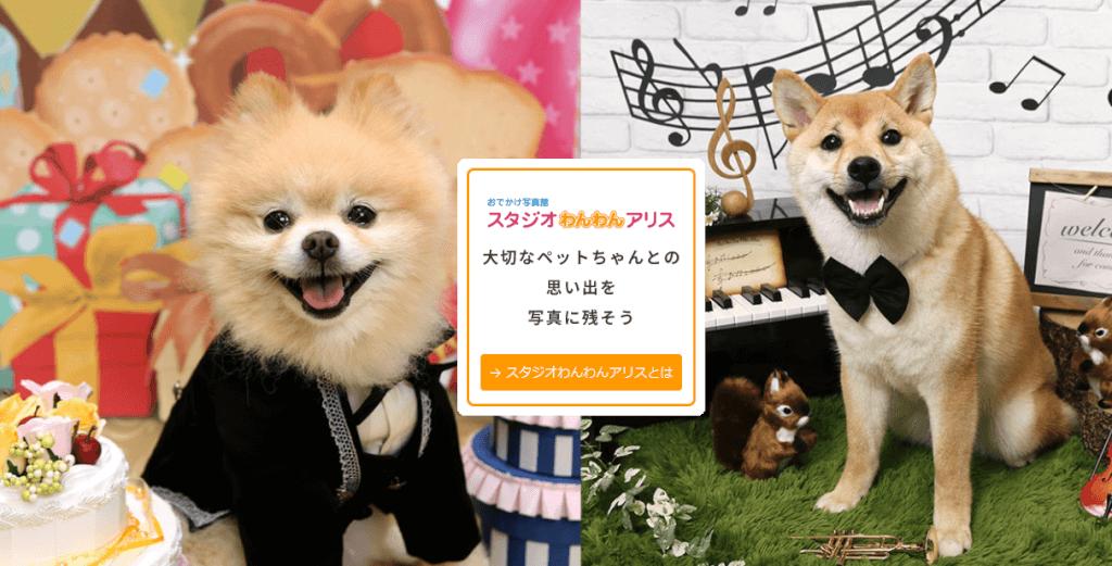 愛犬年賀状デザイン集