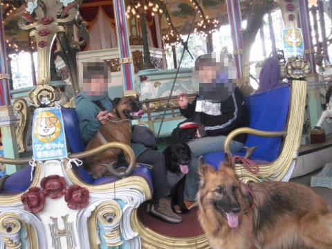 犬連れOK遊園地
