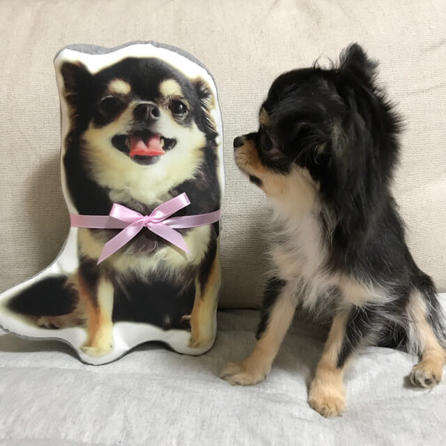 オリジナル愛犬グッズハンドメイド