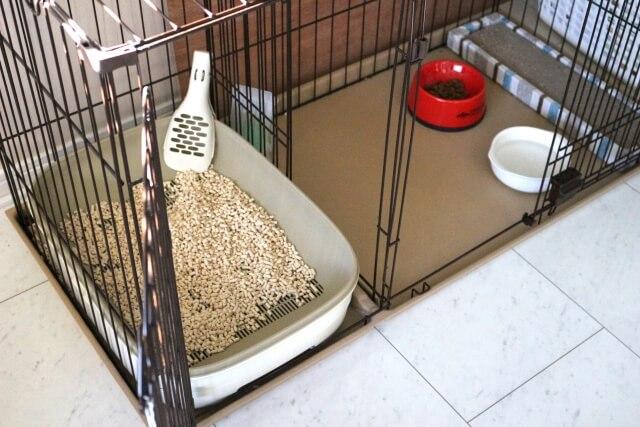 犬のトイレ